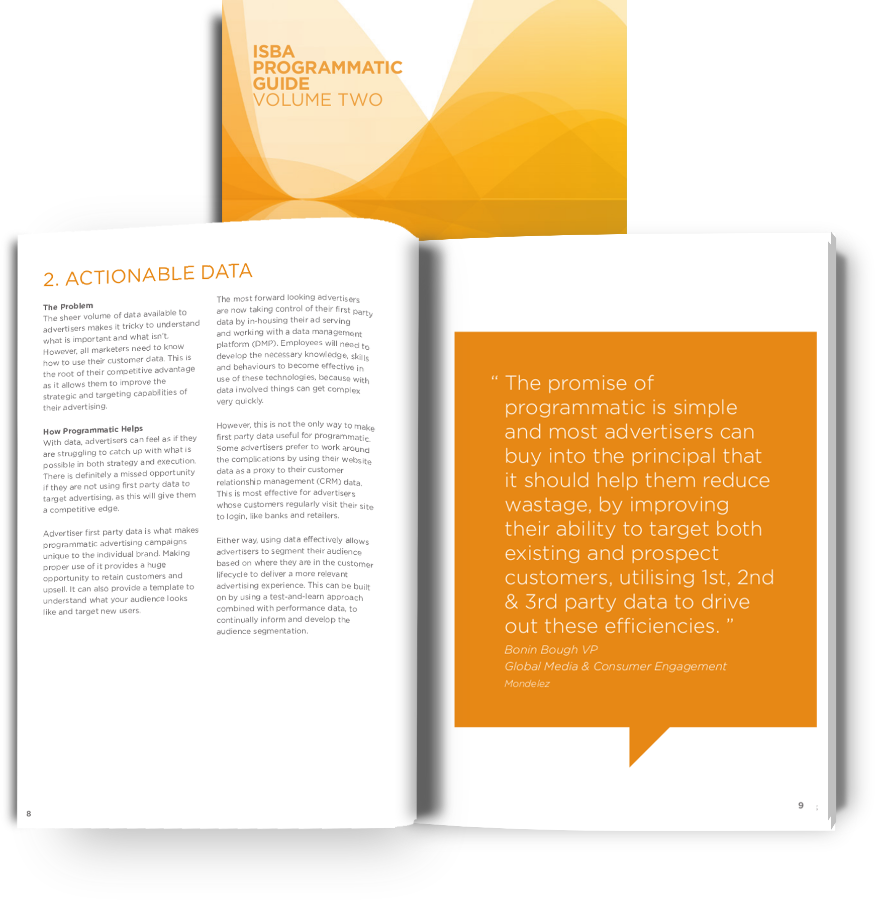 ISBA Guide to Programmatic Volume 2